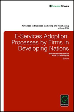 E-services Adoption: Processes by Firms in Developing Nations