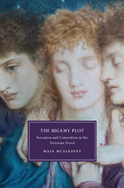 The Bigamy Plot: Sensation and Convention in the Victorian Novel